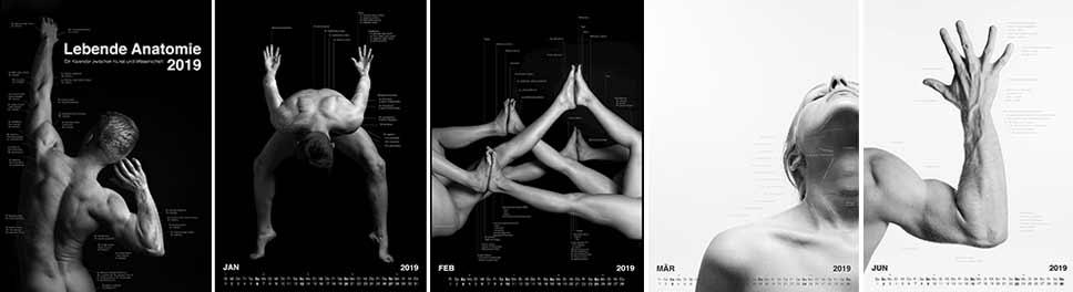 Lebende Anatomie 2019 - Ein Kalender zwischen Kunst und Wissenschaft