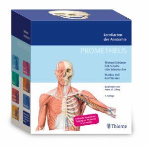 Prometheus Lernkarten Thieme